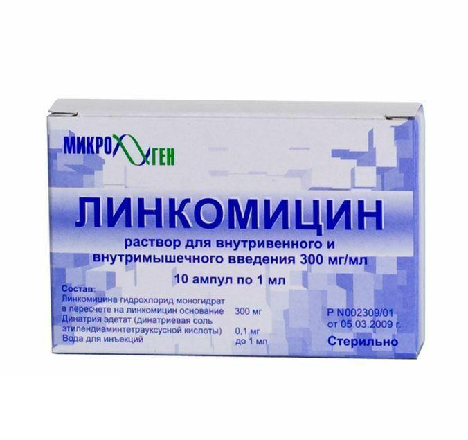 Линкомицин капсулы инструкция по применению