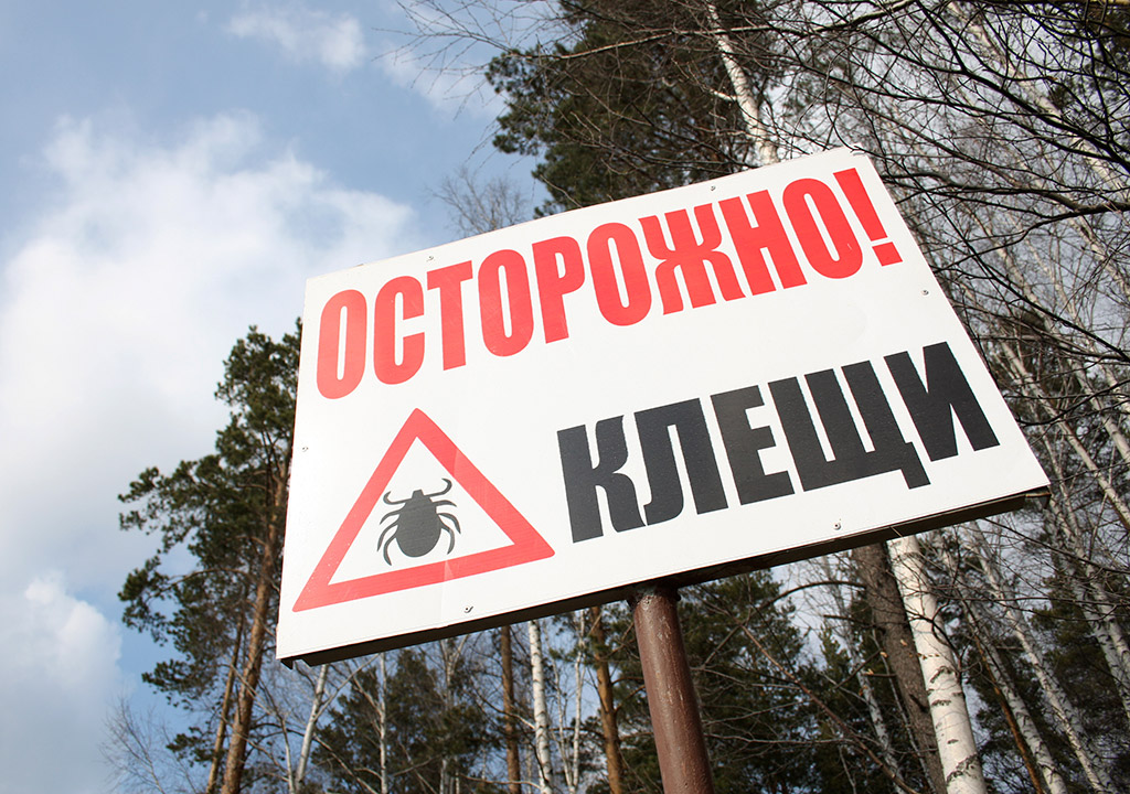 https://health.mail.ru/pic/news/2014/06/03/d0/07/d007f369d7fe028d73a958fd98f25a88.jpg