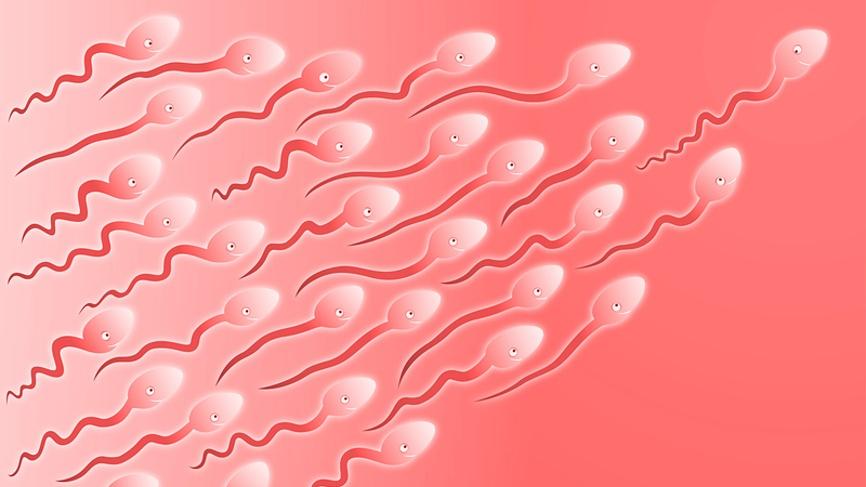 проверить сперму: